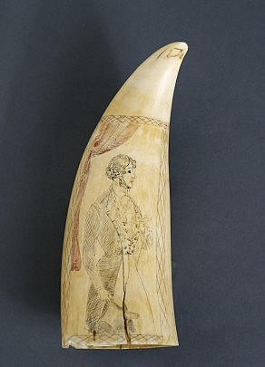 Scrimshawed Whale Tooth