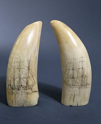 Pair of Whale Teeth